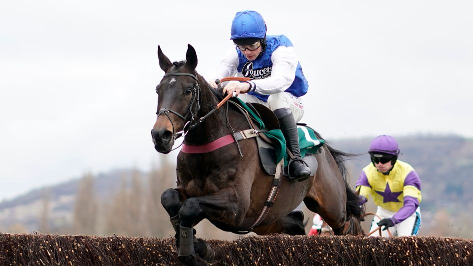 Aso jumps for fun on his way to victory at Cheltenham