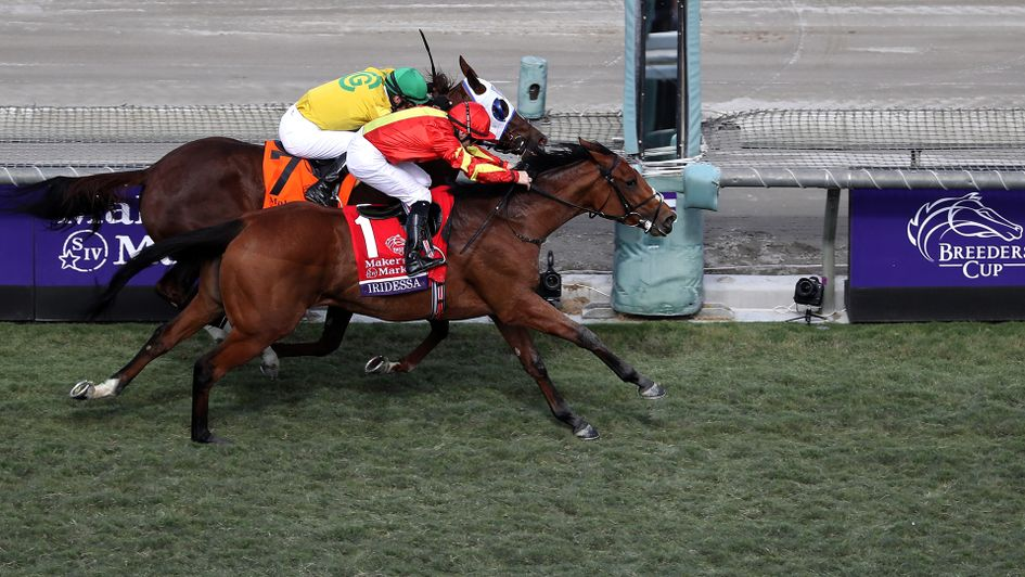 Iridessa sticks her neck out to win at Santa Anita