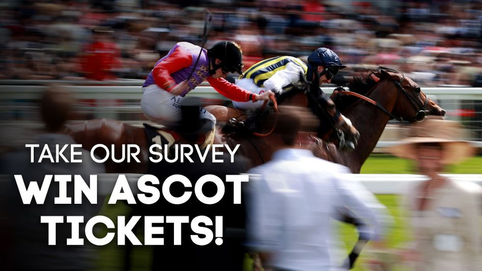 Complete our Betting Survey for your chance to win tickets to Ascot's Christmas Raceday