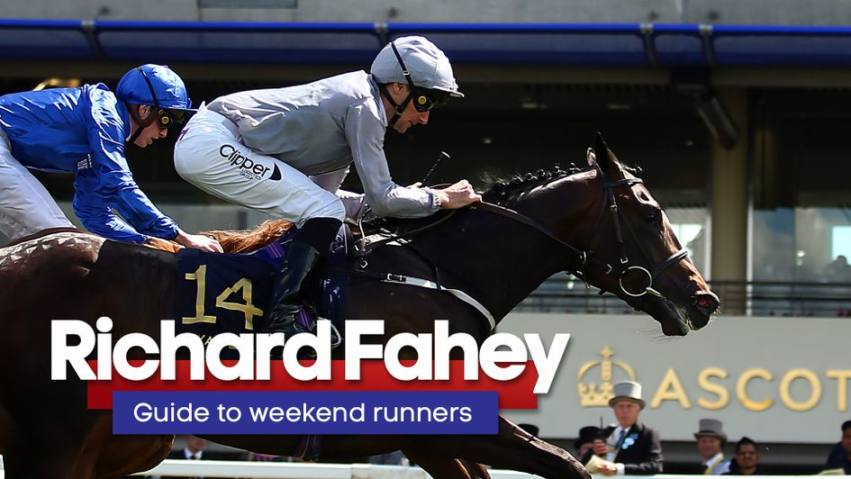 Check out Richard Fahey's thoughts