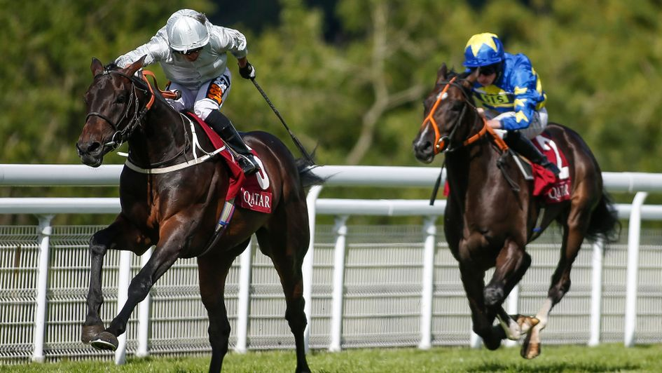 Dee Ex Bee: Can go well in the Derby