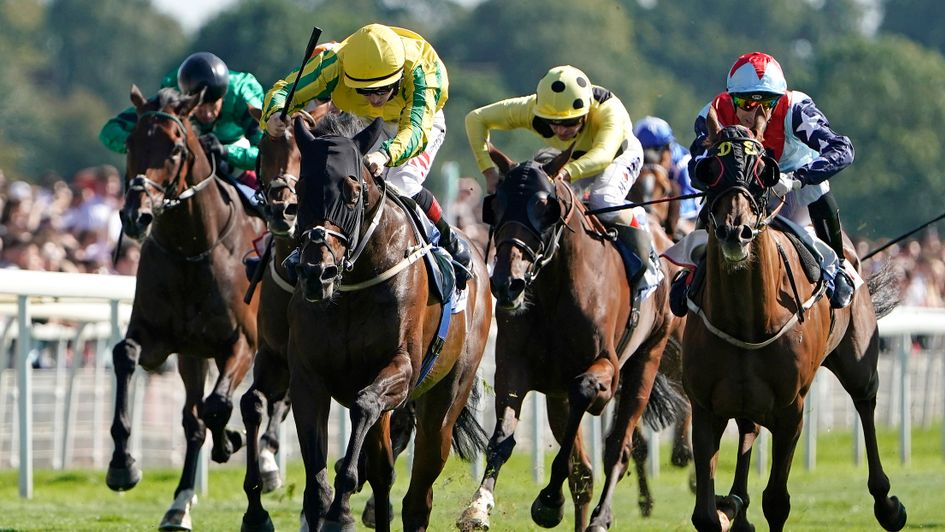 Mustajeer wins the million pound Sky Bet Ebor