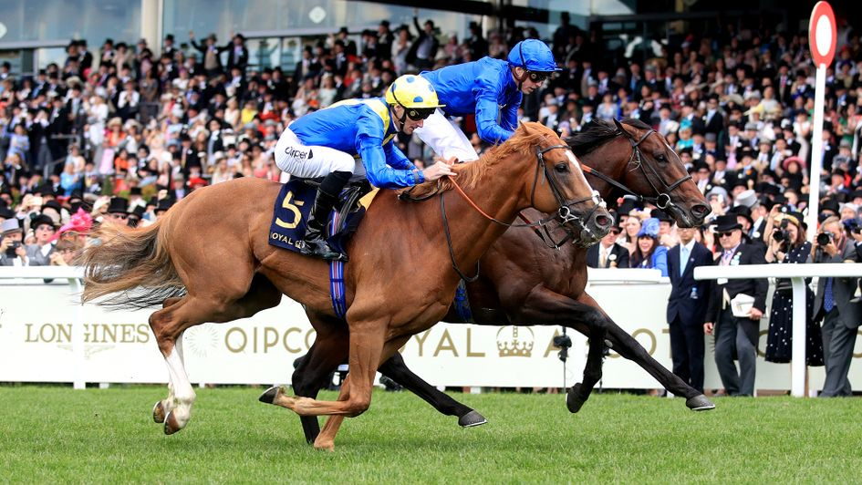 Dream Of Dreams pushes Blue Point close in the Diamond Jubilee