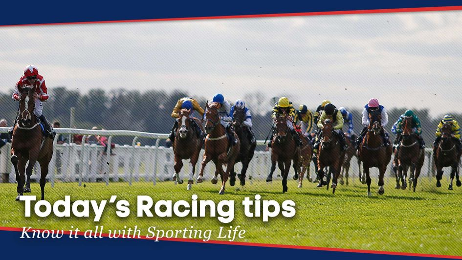Free Horse Racing Selections For Tuesday July 31 Horse Racing