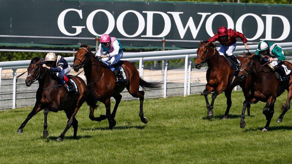 Ben linfoot value bet sporting life worlds sport betting