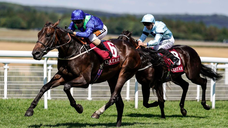 Dark Vision swoops to win the Qatar Vintage Stakes