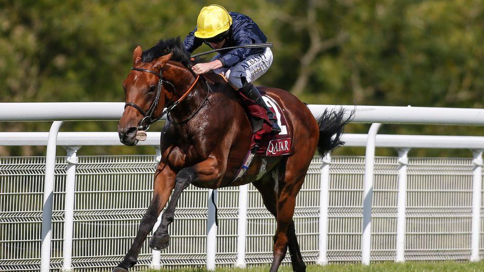 Gordon stakes betting line