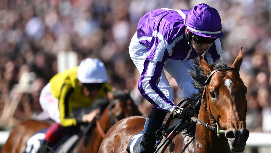 Saxon Warrior slams his Newmarket rivals