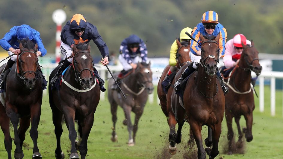Seahenge (far right) wins the Champagne Stakes