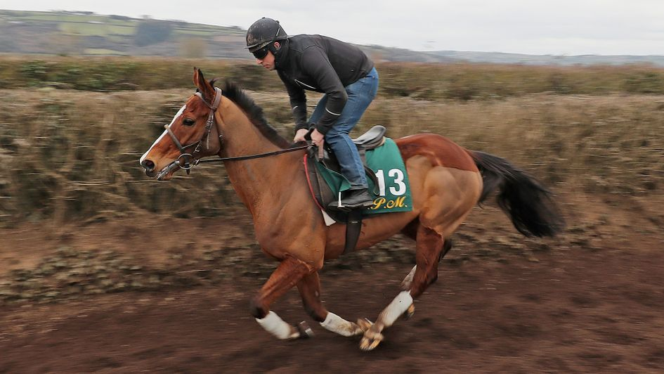 Faugheen comes up the gallops