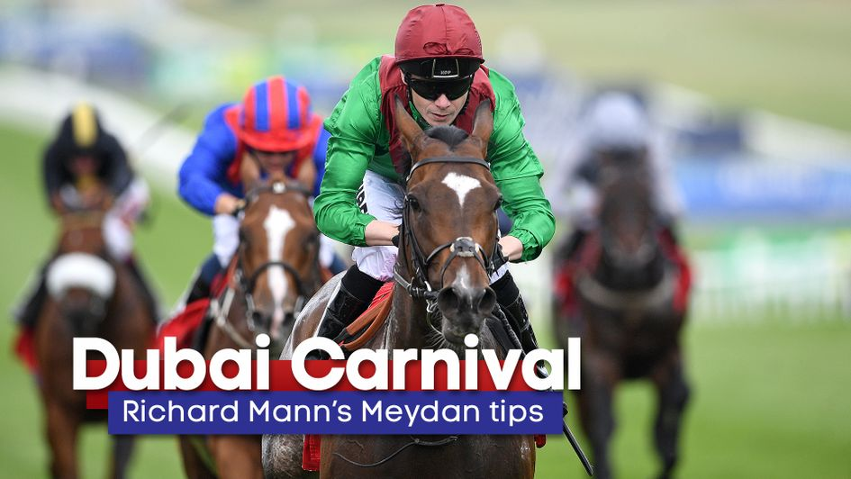 Meydan racing betting strategy double or nothing betting rules