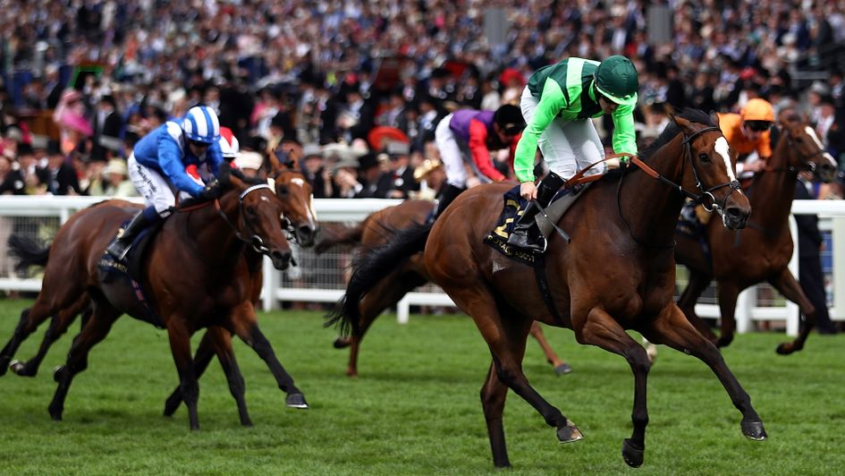 Settle For Bay wins the Hunt Cup at Royal Ascot under Billy Lee
