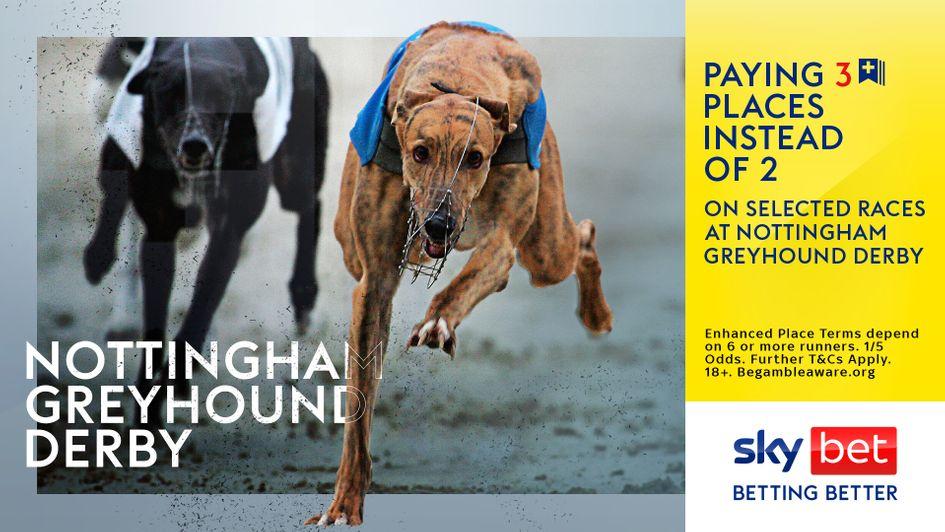 Irish greyhound derby 2021 betting advice weku-fenster wertheim bettingen burton