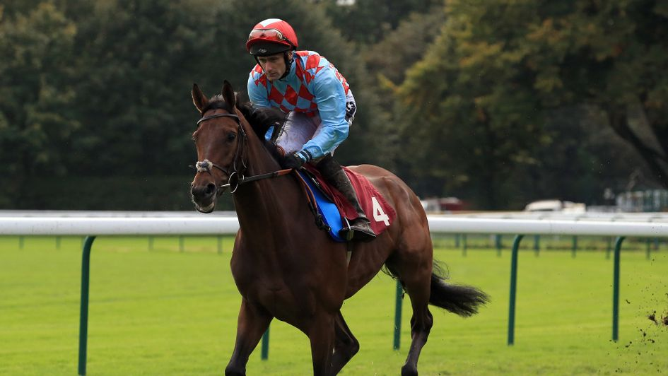 Amazing Red looks to follow up his Kempton victory