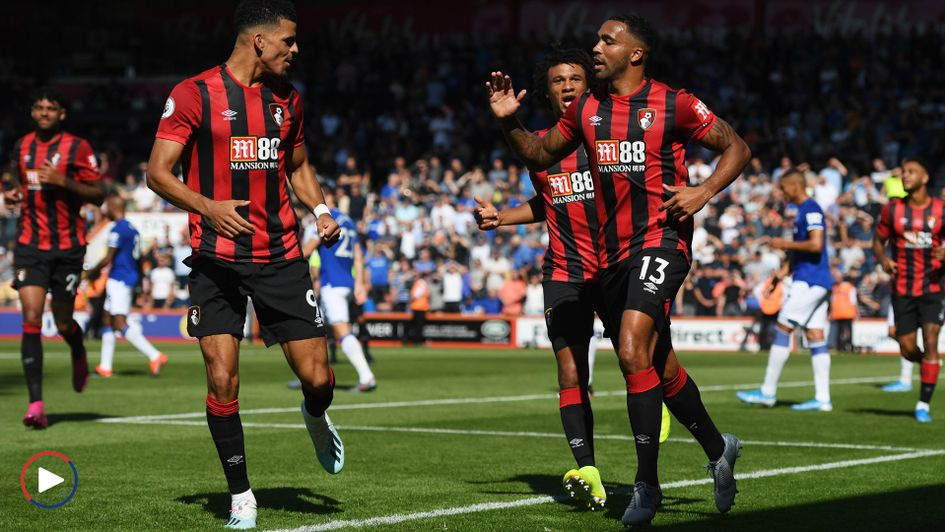 Bournemouth celebrate Callum Wilson's (right) goal against Everton - scroll down to watch highlights