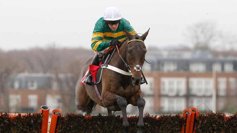 Buveur D'Air: Red-hot favourite to defend Champion Hurdle crown