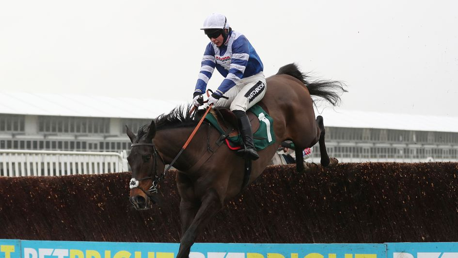 Frodon wins again at Cheltenham