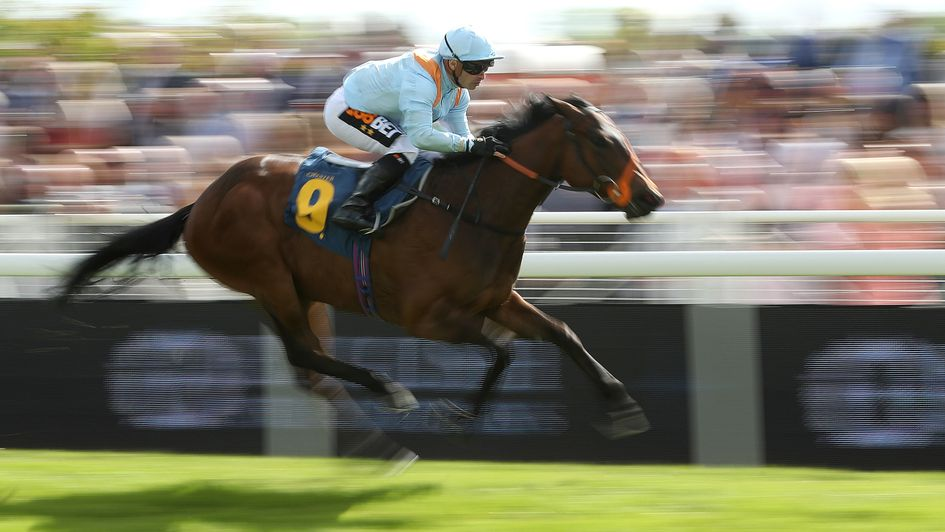 Wedding Date in winning action at Chester