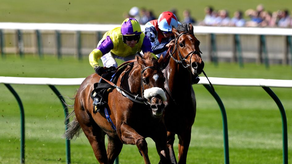Brando wins the Abernant at Newmarket