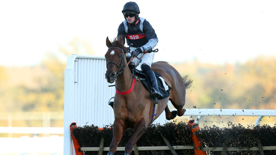 A Hare Breath: Heading for the County Hurdle