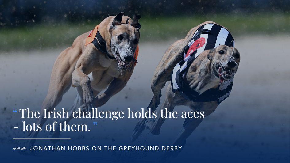 Jonathan Hobbs on greyhound racing, the English Derby and 2020 ...
