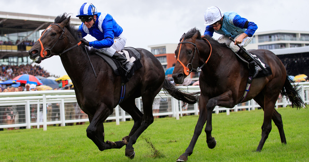 LIVE: Fast results - Horse Racing - Sporting Life