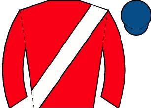 Horse silk