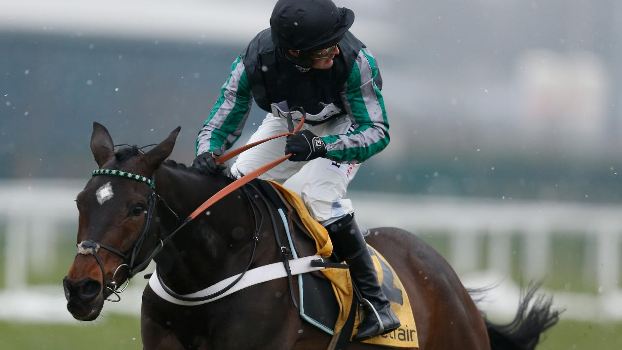 Nicky Henderson left purring by Altior work - Horse Racing ...
