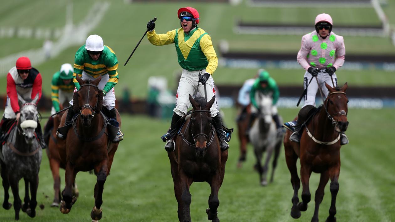 cheltenham gold cup report sizing john the hero horse