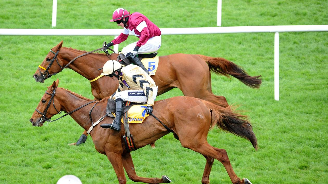 Ryanair Gold Cup report: Road To Respect pips Yorkhill ...