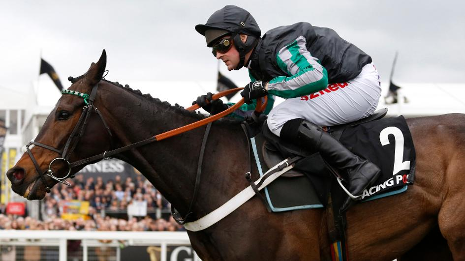 Image result for altior horse