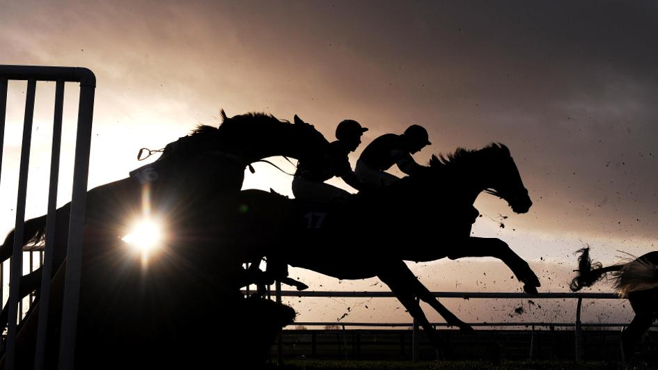 Image result for HORSE RACING MONEY