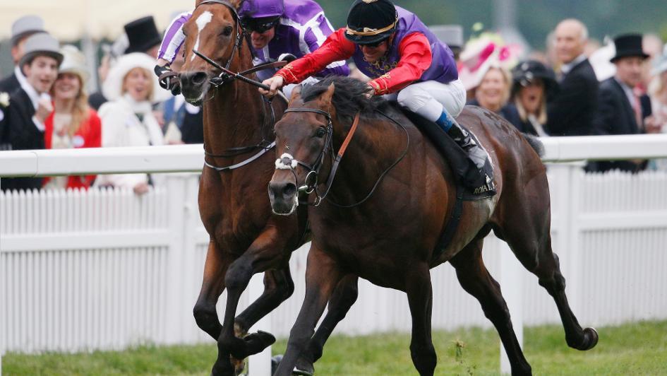 Saturday's Gallops Report: Sir Michael Stoute