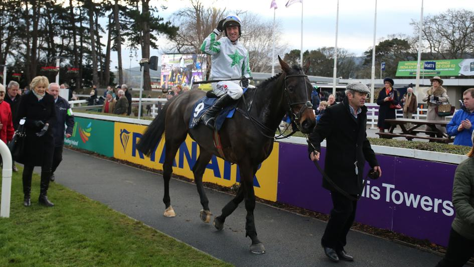 Image result for our duke horse